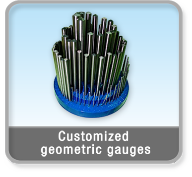 Customized Geometric Gauges